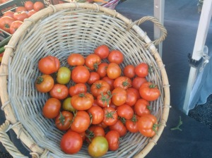 hayters hill tomatoes