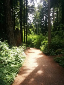 path in stanley park