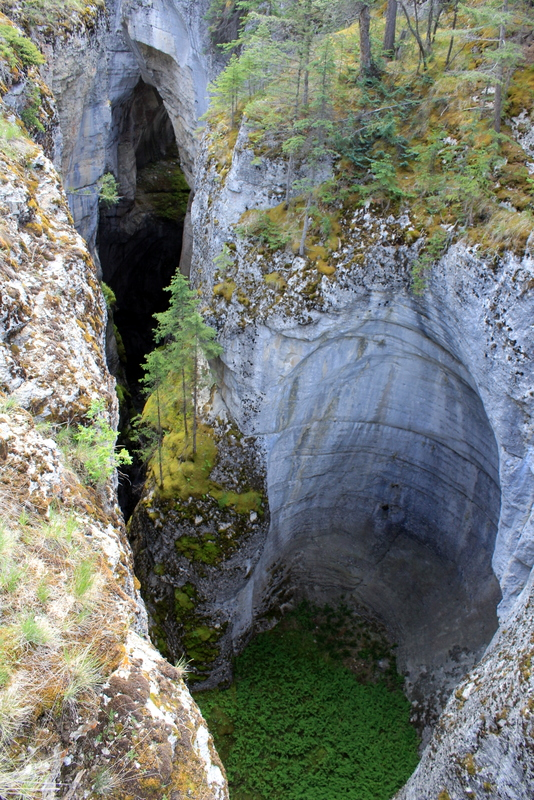 malign-canyon-1