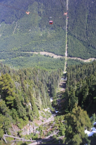 peak-to-peak-long-way-down-001
