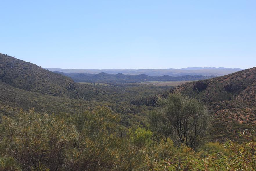 view-from-the-lookout