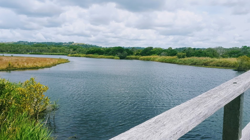 tallow-creek