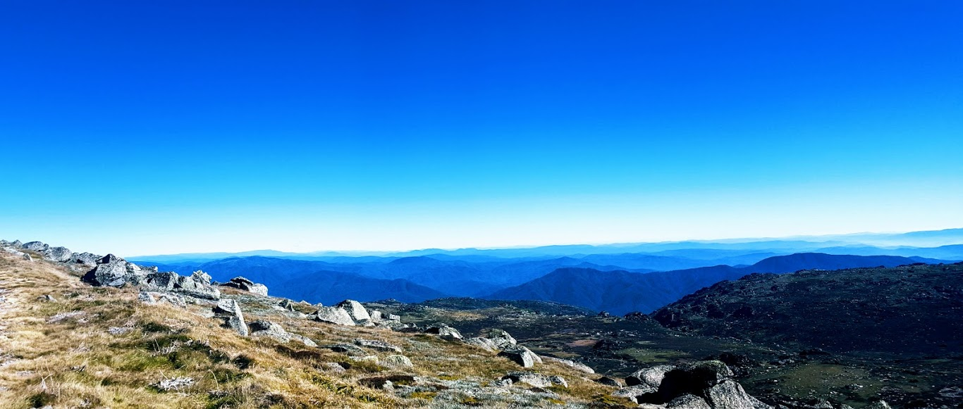 panorama summit