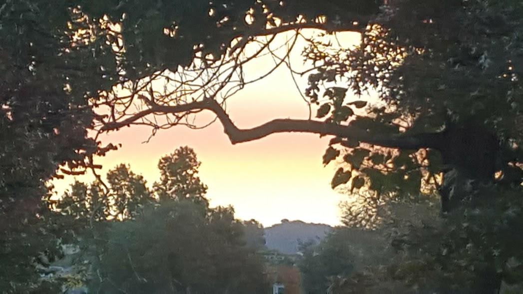 tumut sunset