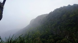 The misty lookout
