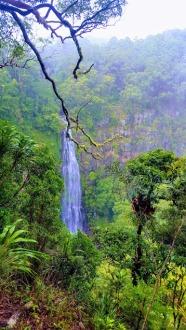 Moran's Falls