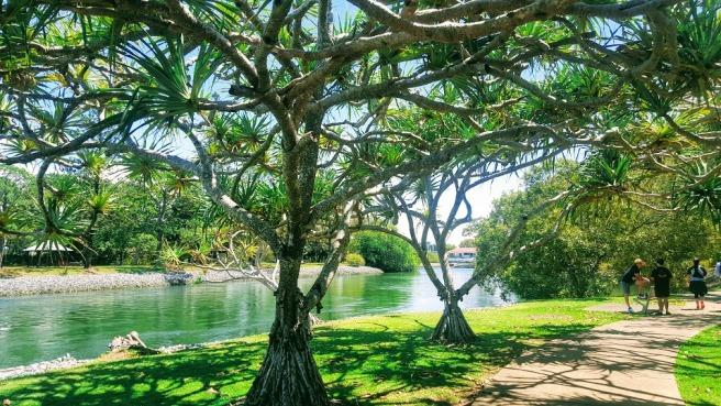 cascade gardens